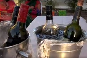 'India Grape Harvest' Wine Fest 2013